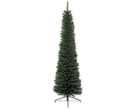 107064-Pencil-Pine-680061.jpg