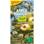 GS-apple-maggot-start.jpg