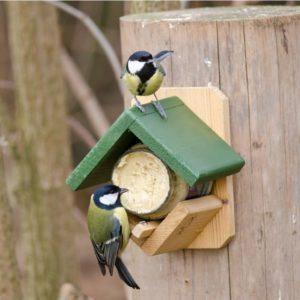 Bird Feeders & Feeding Stations