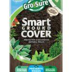 Westland-smart-cover.jpg