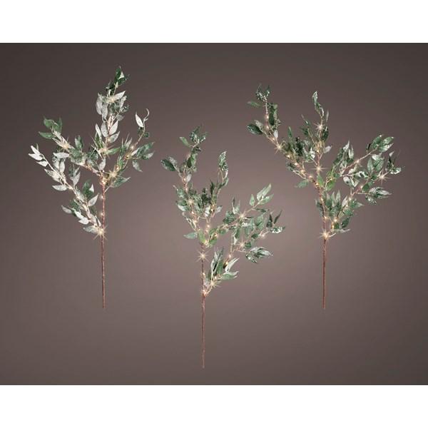micro-LED-olive-branch.jpg