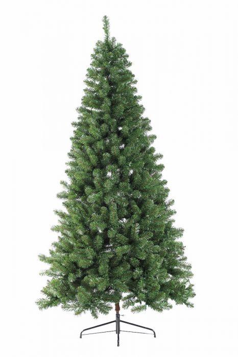 virgina-spruce-7ft.jpg