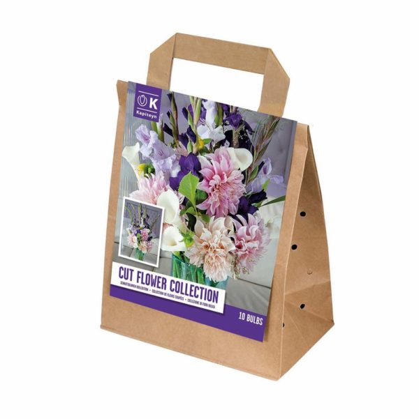 Buy Cut Flower Collection Online