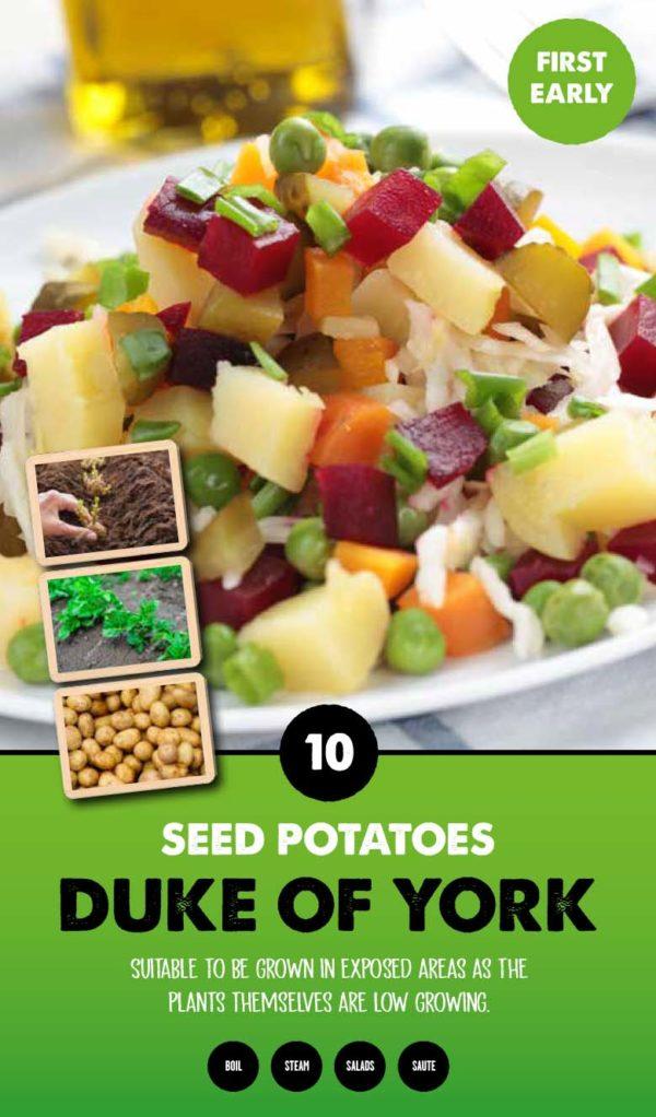 GCE-Potatoes-8711805062460.jpg