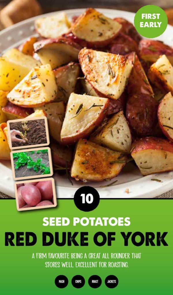 GCE-Potatoes-8711805062491.jpg