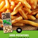 GCE-Potatoes-8711805062743.jpg