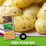GCE-Potatoes-8711805072353.jpg
