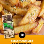 GCE-Potatoes-8711805072377.jpg