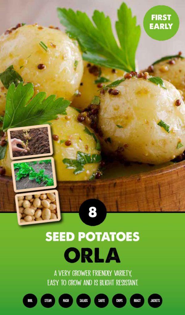 GCE-Potatoes-8711805079604.jpg