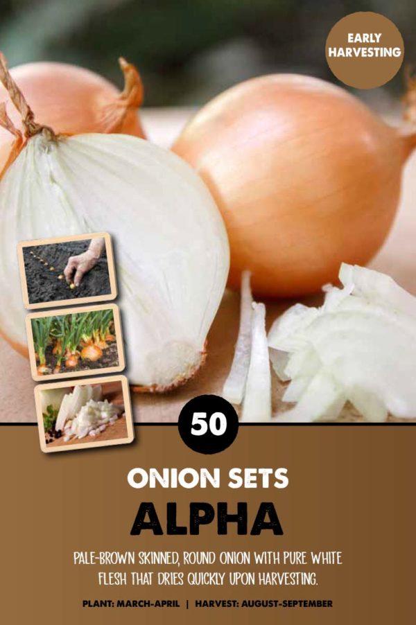 GCE-Vegetables-8711805062682.jpg