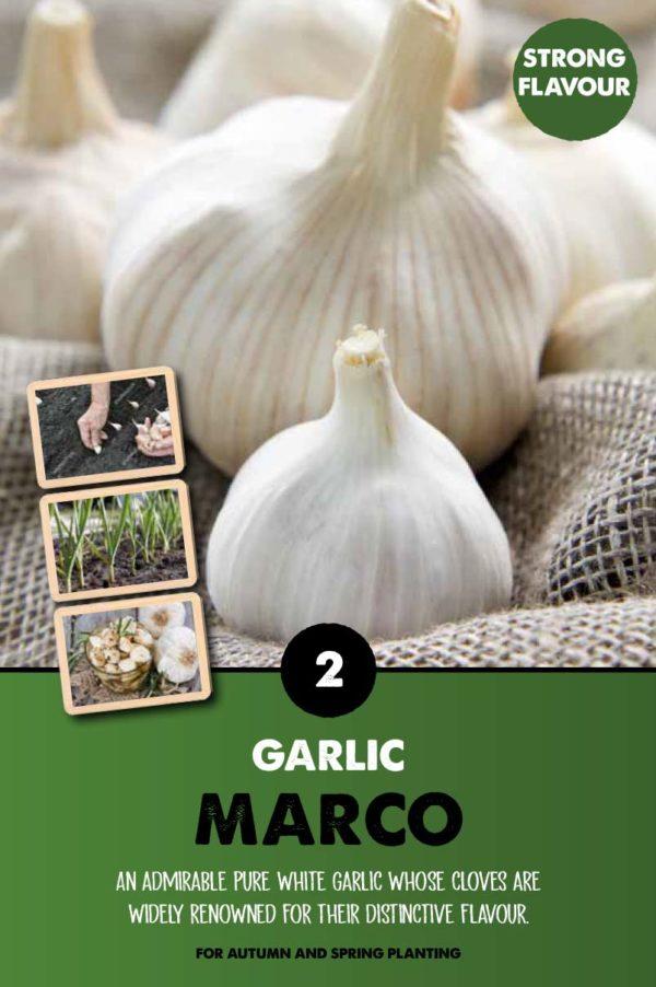 GCE-Vegetables-8711805062798.jpg