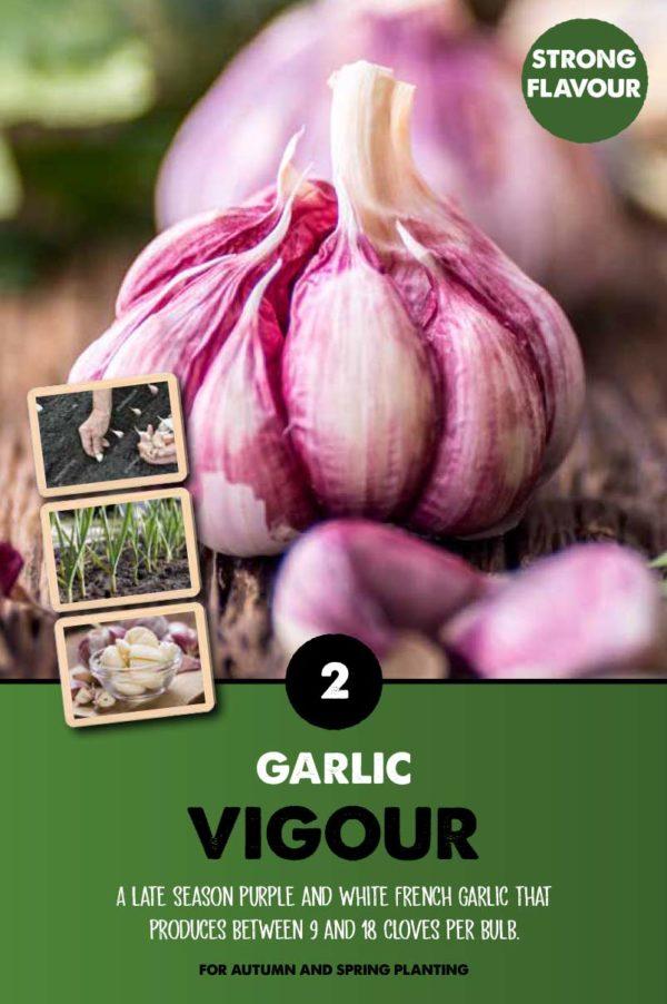 GCE-Vegetables-8711805079765.jpg
