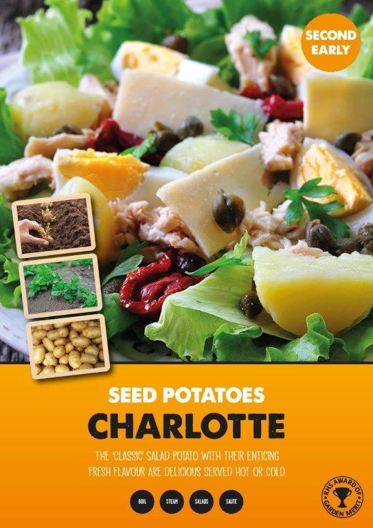 Posters-Potatoes-Charlotte.jpg