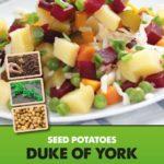 Posters-Potatoes-Duke-of-York.jpg