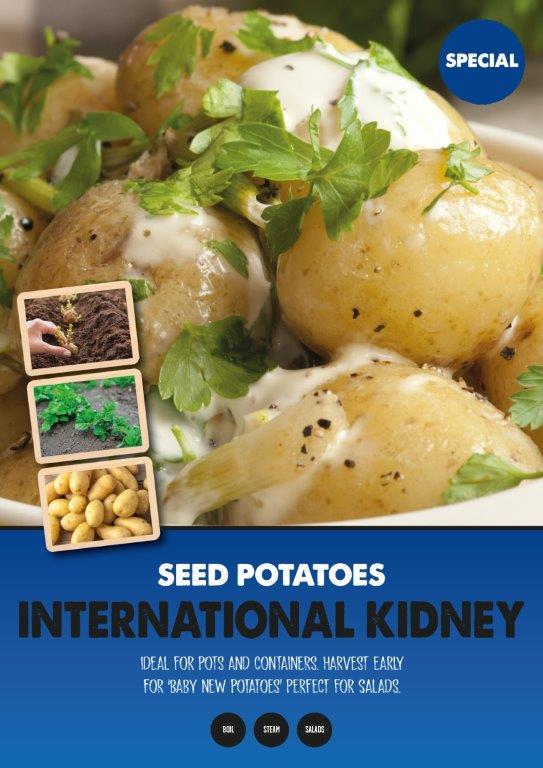 Posters-Potatoes-International-Kidney.jpg