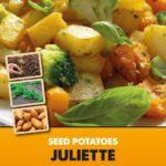 Posters-Potatoes-Juliette.jpg