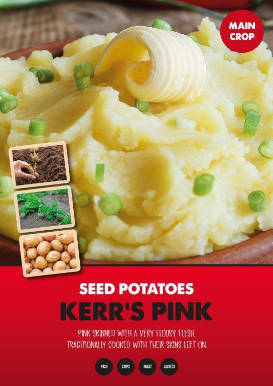 Posters-Potatoes-Kerrs-Pink.jpg