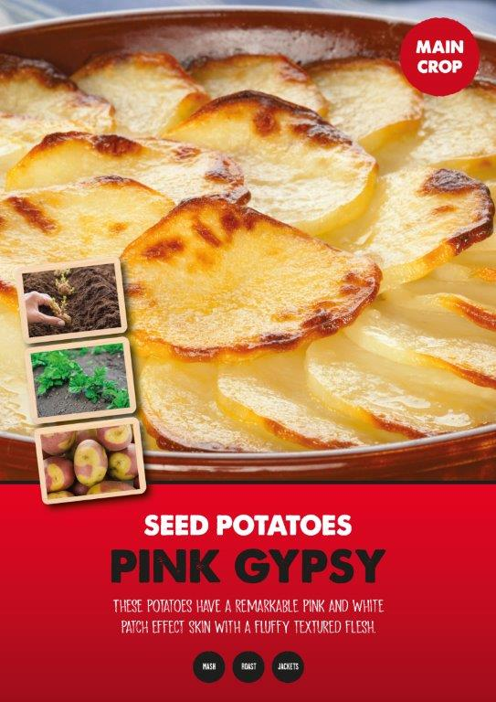 Posters-Potatoes-Pink-Gipsy.jpg