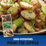 Posters-Potatoes-Pink-Rir-Apple.jpg