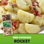 Posters-Potatoes-Rocket.jpg