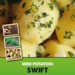 Posters-Potatoes-Swift.jpg