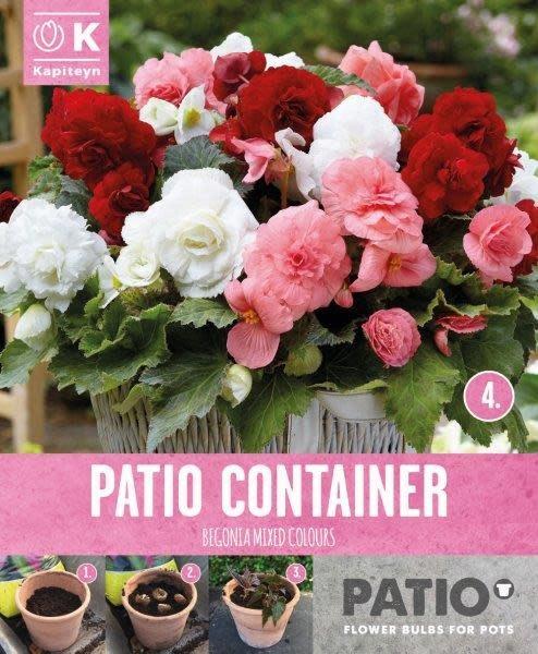 patio-container-begonias.jpg