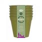 Buy Bamboo Pot 5 inch Online