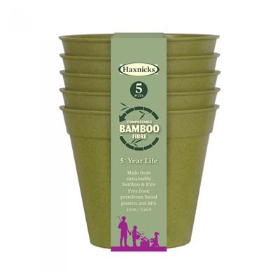 Buy Bamboo Pot 6 inch Online