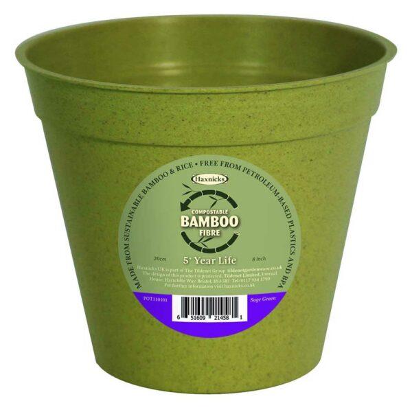 Buy 8 inch Bamboo Pot Single SAGE Online