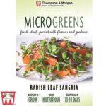 Microgreen-radish-leaf-sangria.jpg