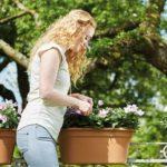 elho-green-basics-flower-bridge-55-cm-mild-terracotta-in-use.jpg