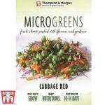microgreen-cabbage-red.jpg