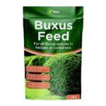 Buy Buxus fee Online