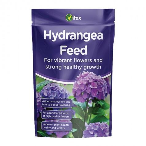 Buy Hydrangea Feed Online