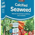 Buy Calcified Seaweed Online