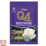 q4-rootmore.jpg