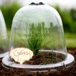 Buy Baby Original Victorian Bell Cloches Online