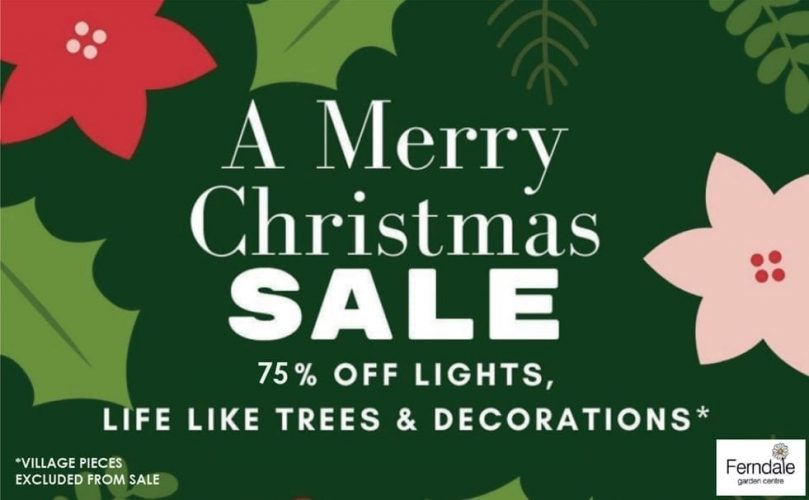A-Merry-CHRISTMAS-SALE-75-percent-OFF