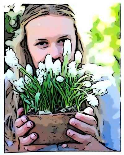 Plant Spring Flowering Bulbs Now