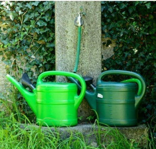 Watering in Summer 2018