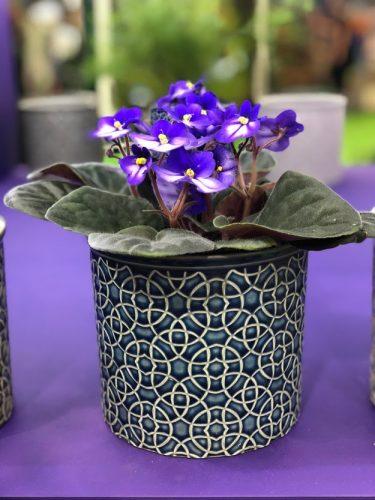 african violet pot cover